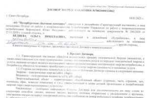 Фрагмент договора электроснабжения